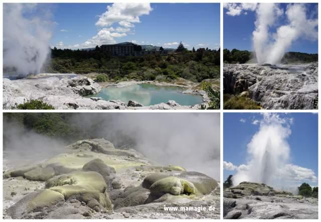Neuseeland, Rotorua: Pohutu Geysier