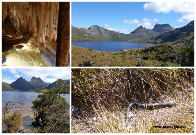 Tasmanien: Marakoopa Cave, Cradle Mountain National Park