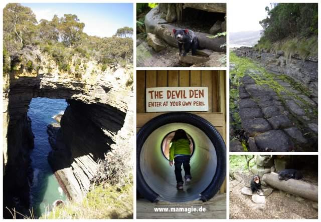 Tasmanien Devil Conservation Camp, Tasman Arch, Tessellated Pavement