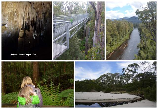 Hasting Caves and Thermal Springs, Tahune Airwalk, Tasmanien