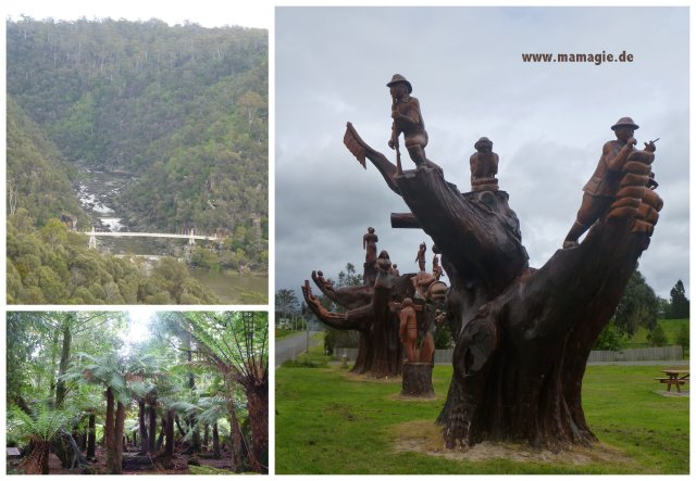 Tasmanien: Weldborough Pass Rainforest Walk, Legerwood Chainsaw Sculptures, Lauceston Cataract Gorge