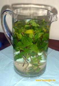 Leckeres Wasser mit Geschmack Selbermachen