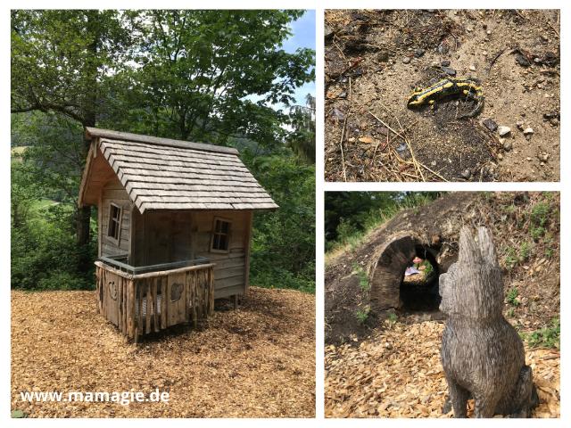 Rätselpfad im Schwarzwald