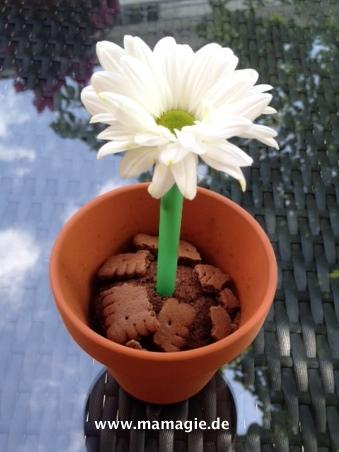 Lustiger Muffin mit Blume