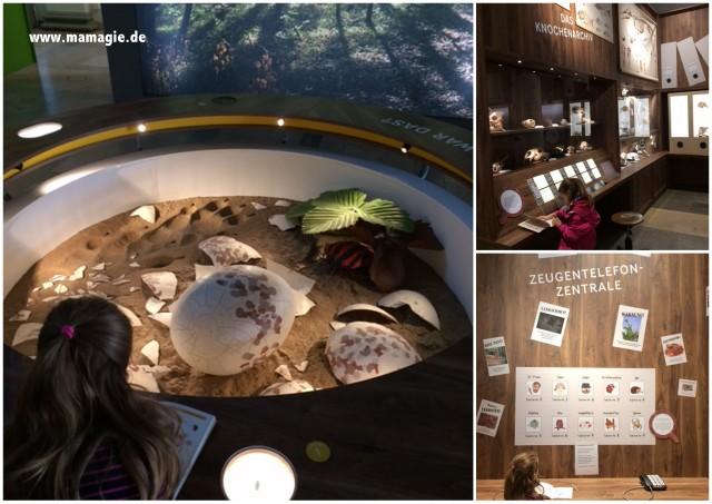 Ausstellung für Kinder im Museum Schloss Rosenstein