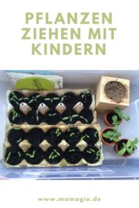 Garten auf der Fensterbank mit Kindern